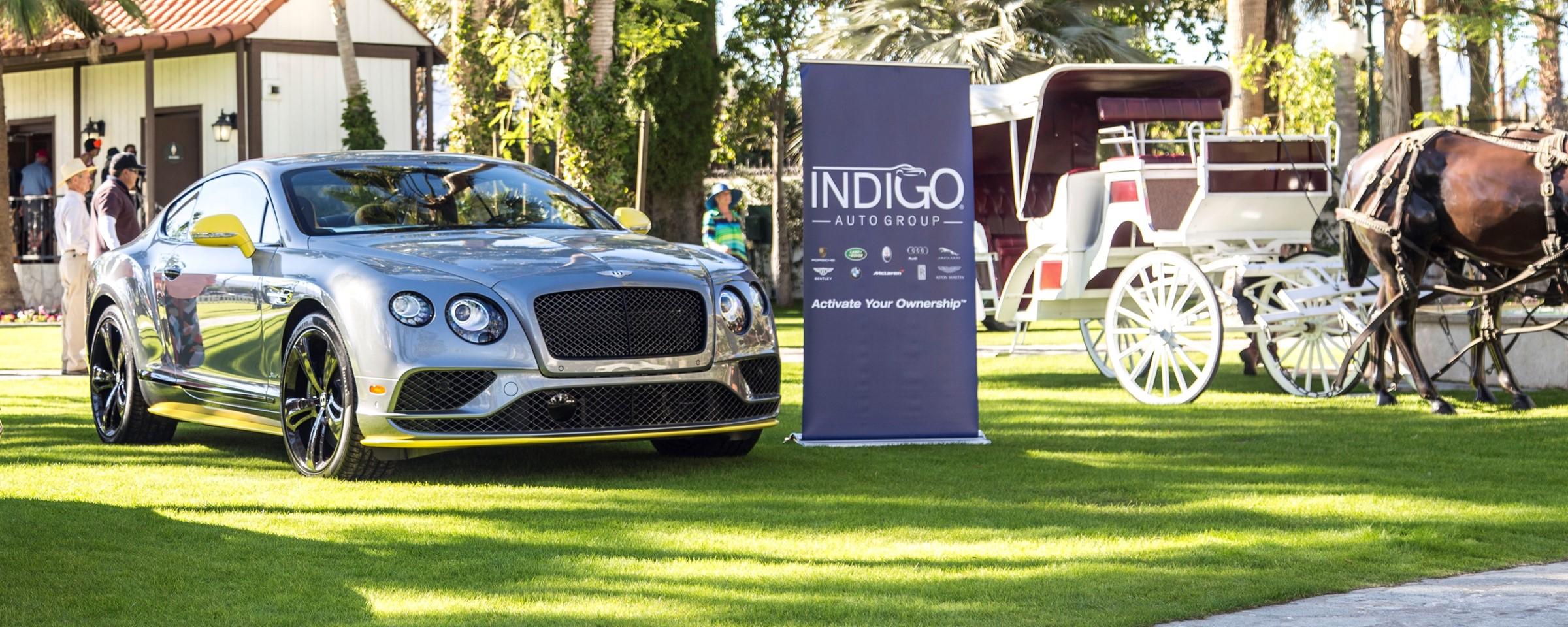 indiGO Empire Polo